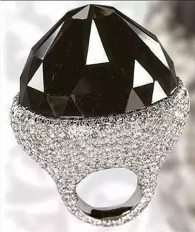 神秘而珍稀的黑天鹤——黑钻石7.jpg